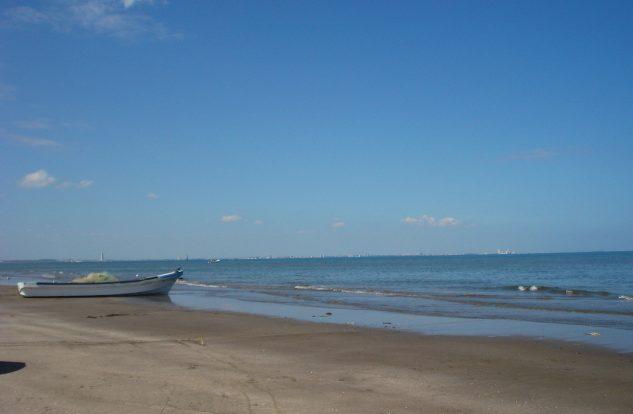 Limpias Playas Veracruzanas: COFEPRIS