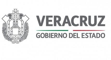 El Gobierno de Veracruz no ha intervenido en el proceso electoral: Gina Domínguez