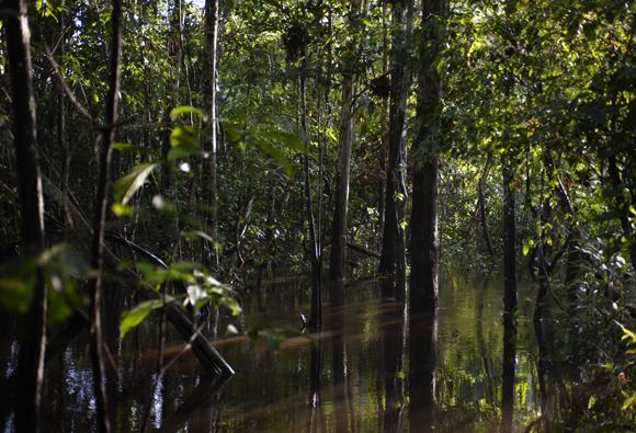Concluyó el Foro Sobre Áreas Privadas de Conservación
