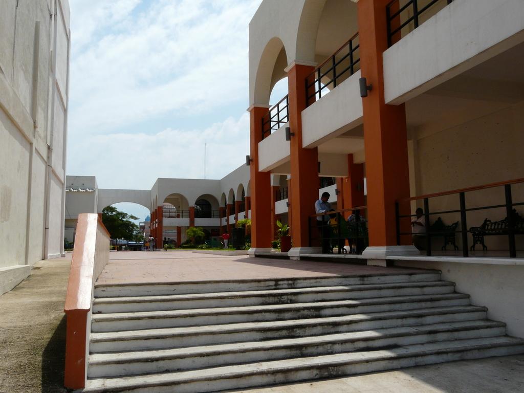 Creadores locales montan exposición en palacio municipal de Coatzacoalcos