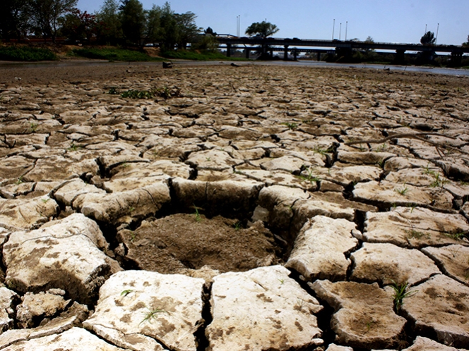 Sagarpa destinará más de 8 mil mdp para sequía