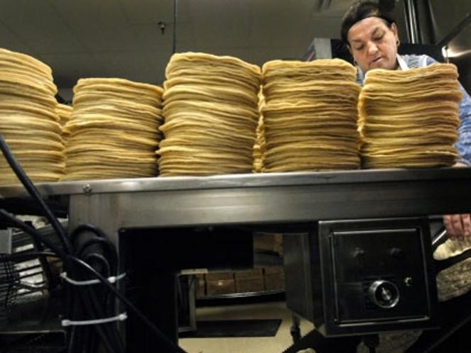 Aumentaría precio del kilo de tortilla en zona Veracruz-Boca del Río