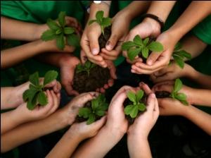 Capacita Semarnat a funcionarios en materia ambiental