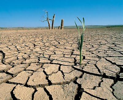 Pronostican un invierno intenso y sequía severa para el próximo año