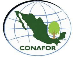Curso de sistemas de información de la Conafor