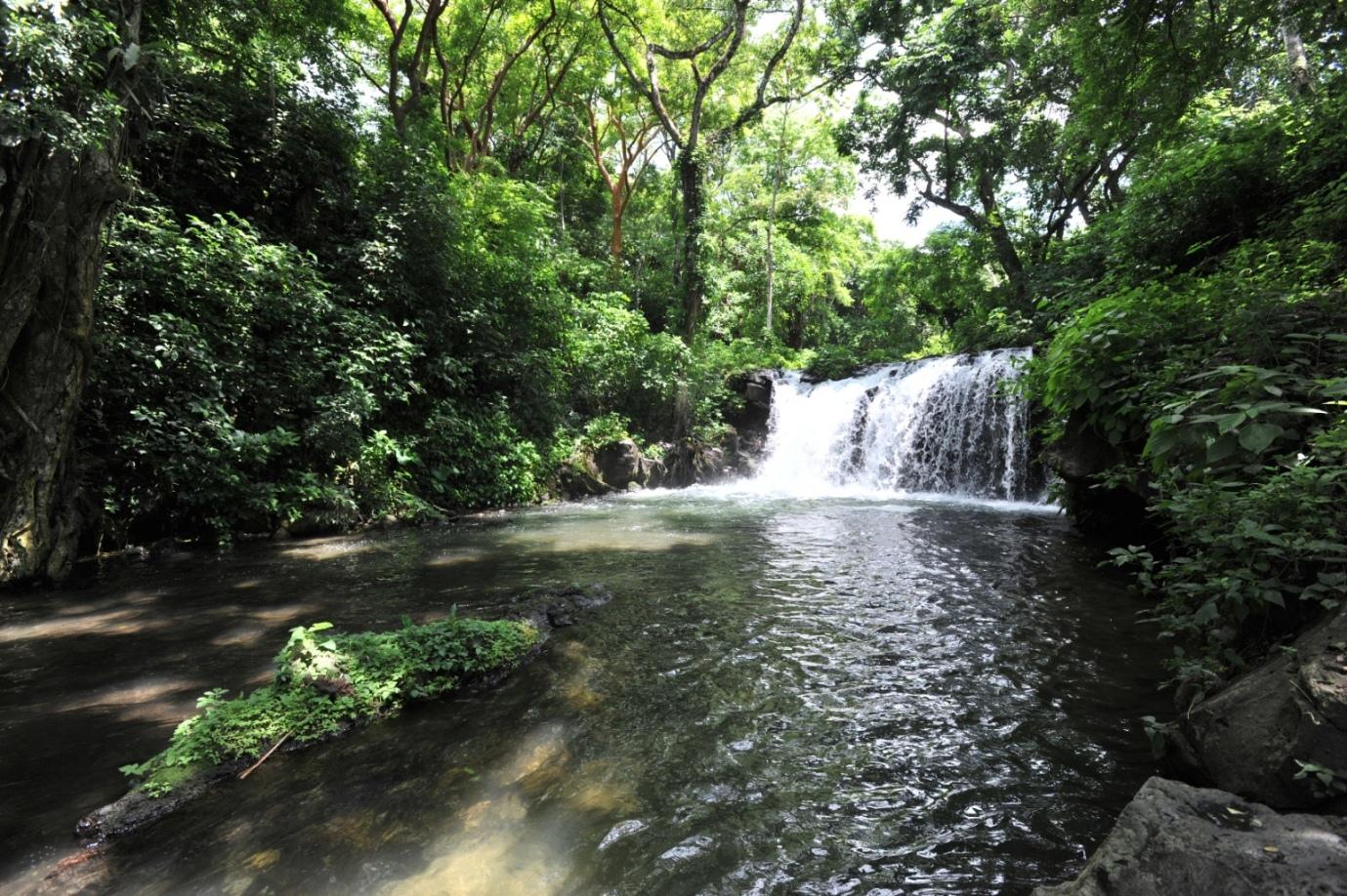 El turismo se reactiva en Veracruz: Xóchitl Arbesú