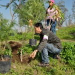 Conafor inicia temporada de restauración y reforestación