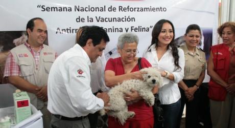 Con casi 700 puestos de vacunación, inmunizará Secretaría de Salud a más de 600 mil mascotas