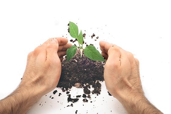 Promueven proyectos para la conservación ambiental