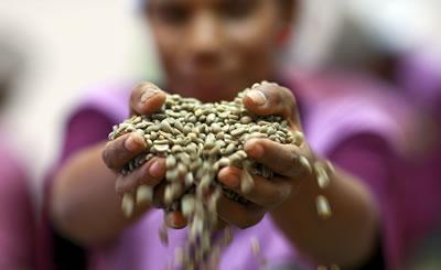 Mujeres productoras del campo, otra alternativa