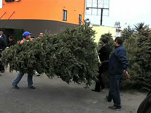 """Inicia el programa """"Recicla tu Navidad"""""""