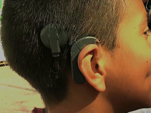 Empresas de Veracruz-Boca del Río han contratado personas con discapacidad auditiva