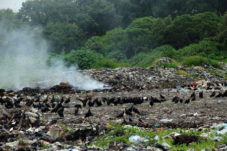 Se agrava problema ambiental por quema de basura en Veracruz