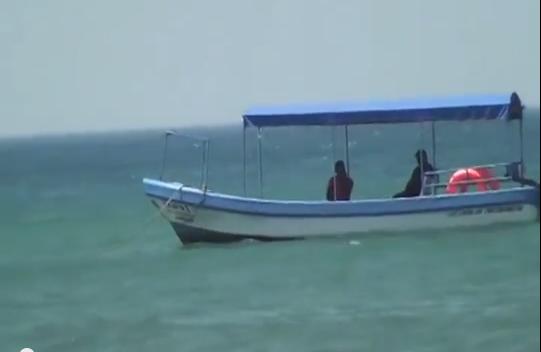 Por baja demanda, descienden precios de productos marinos en Veracruz