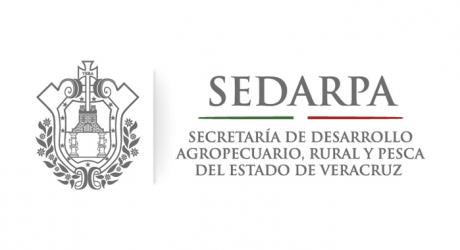Rebasa Sedarpa meta en operación de comités de Contraloría Ciudadana