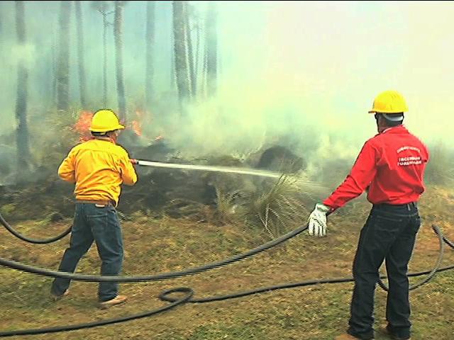 México, pionero en el combate de incendios forestales en América Latina