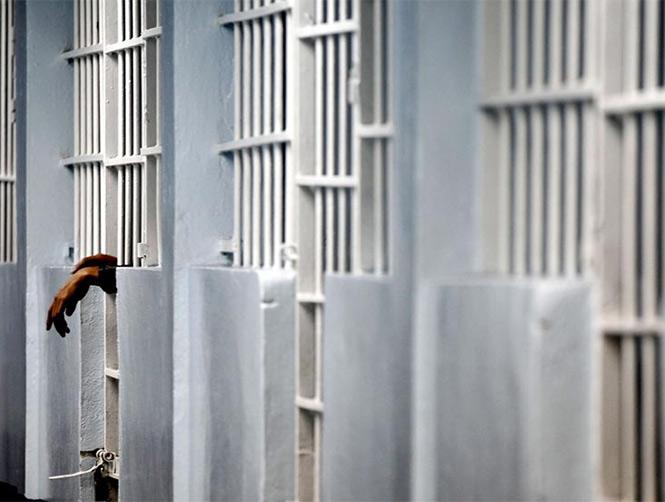 Capturan a cerca de cinco mil fugitivos en búsqueda global de China
