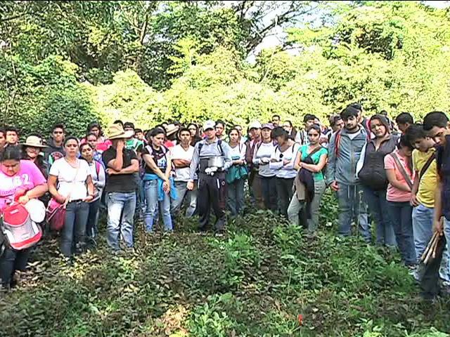 Siembran estudiantes más de 60 árboles del bosque mesófilo de montaña