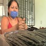 Inbioteca logró innovaciones tecnológicas en los cultivos de vainilla y estevia