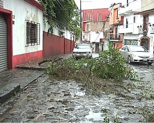 Fuertes lluvias se registran en Xalapa