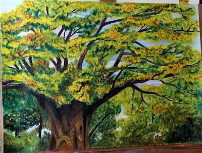 """Concurso Nacional de Dibujo Infantil """"Vamos a pintar un árbol"""""""