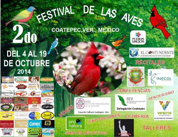 Cetrería y talleres en el  II Festival de las Aves en Coatepec
