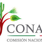 Conafor invita a participar en el Premio Nacional al Mérito Forestal 2017