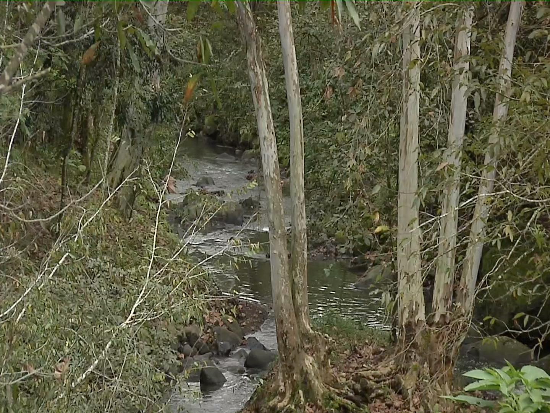 Invitan al foro de rescate del Río Sedeño