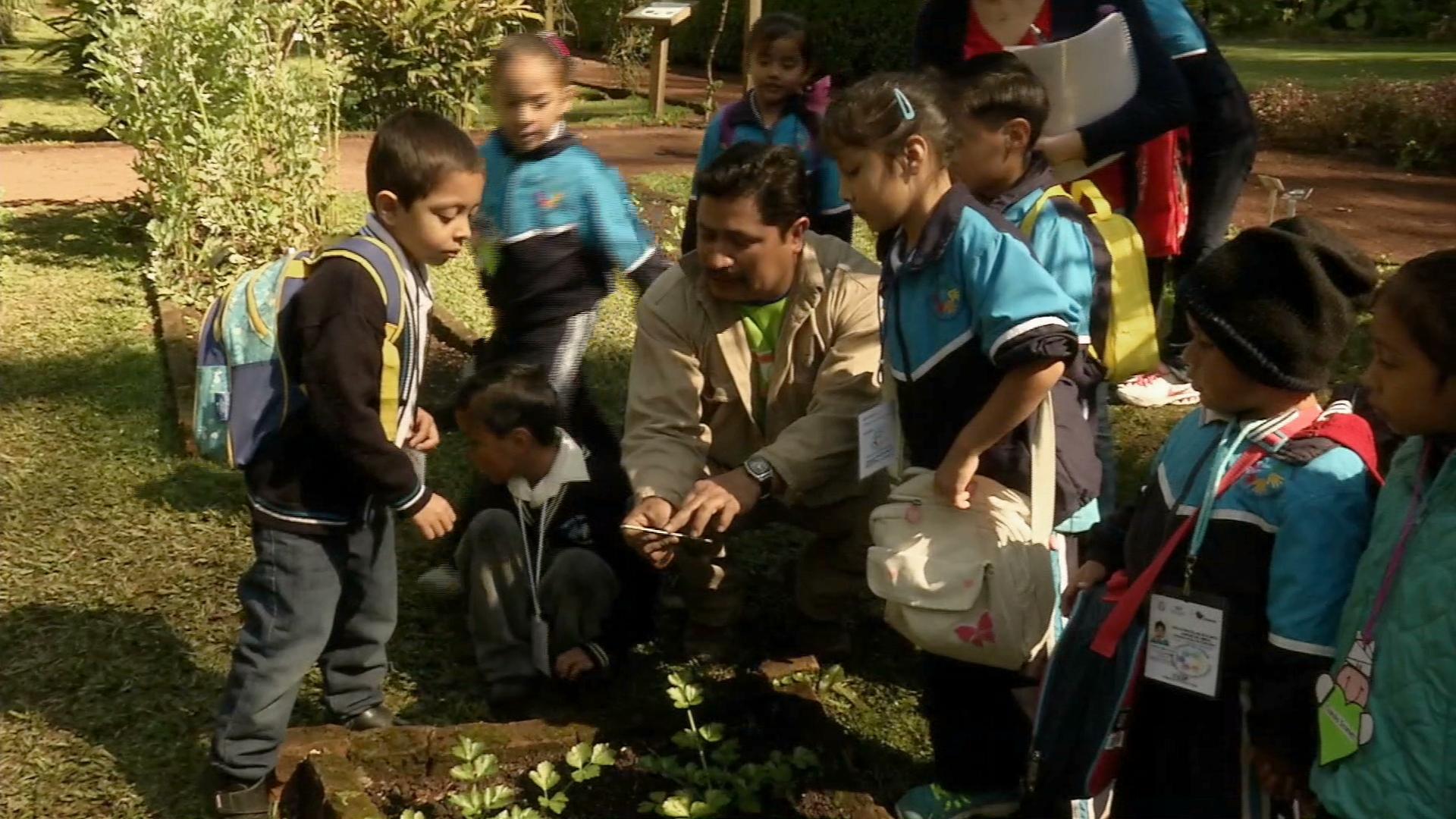 Alumnos de preescolar aprenden cuidado del medio ambiente en el Jardín Botánico