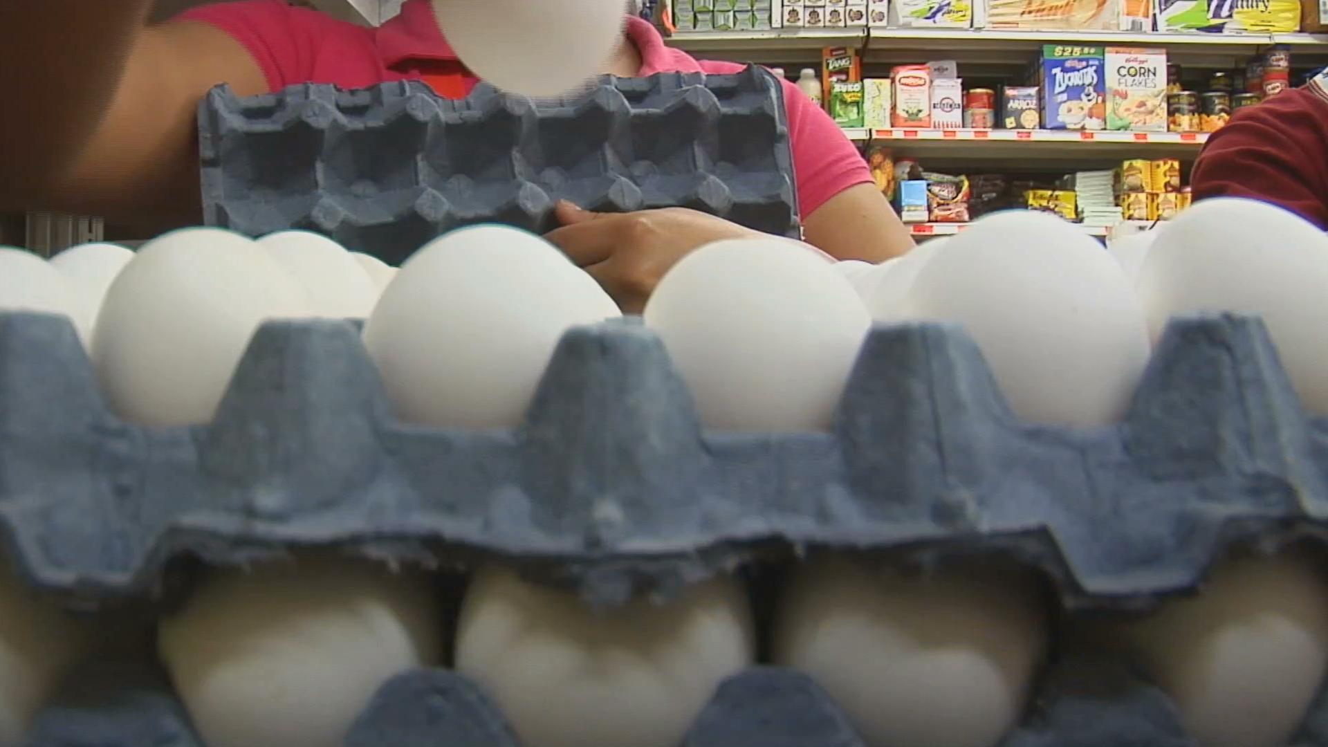 Suspende Profeco venta de huevo en 7 empresas