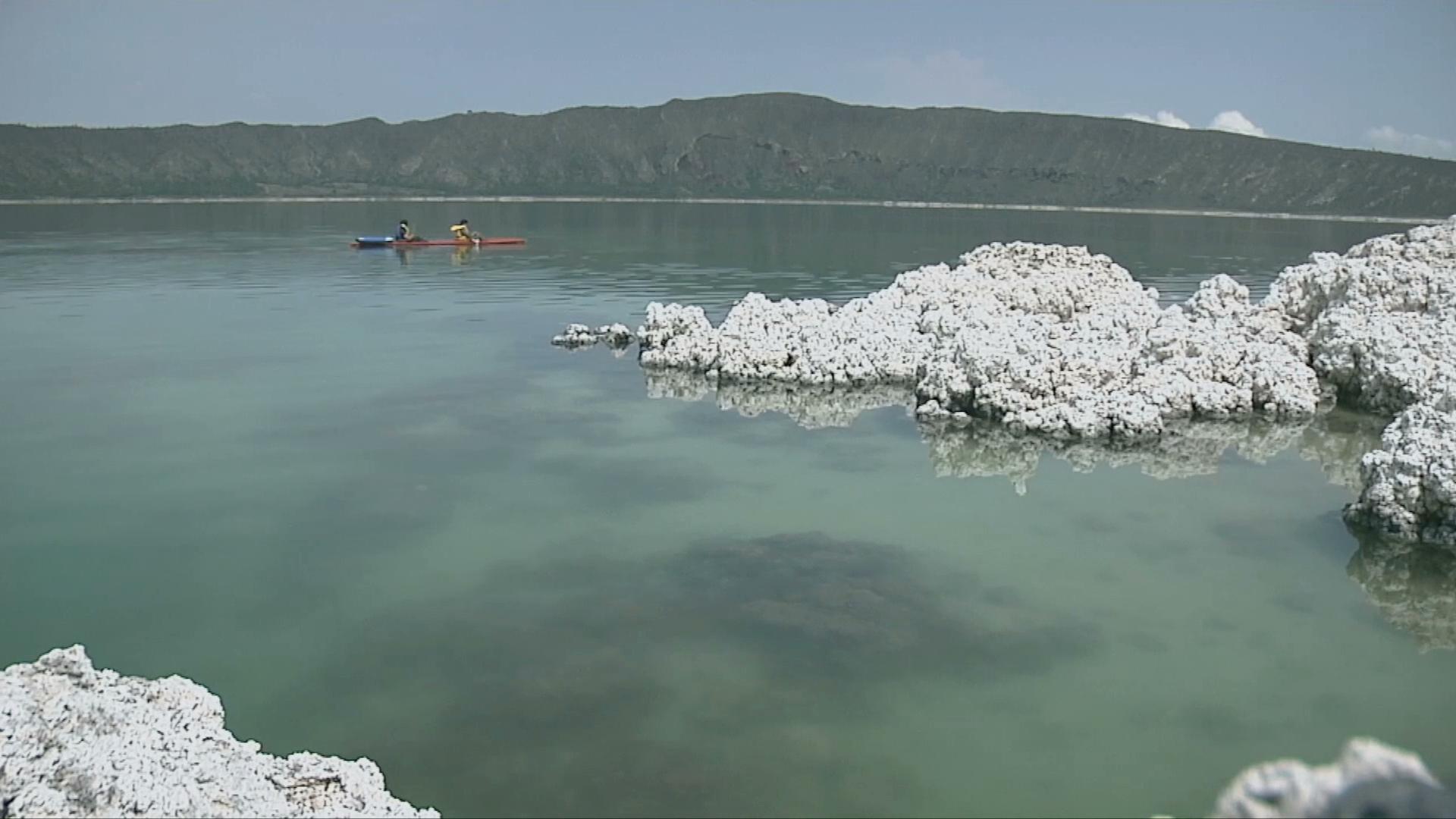 Se busca establecer el 15 de julio como el Día de los Estromatolitos en México