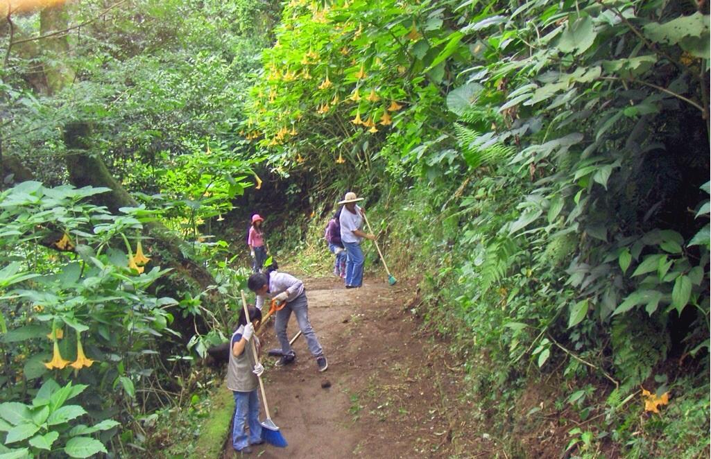 No se permitirá invasores de áreas verdes en Xalapa