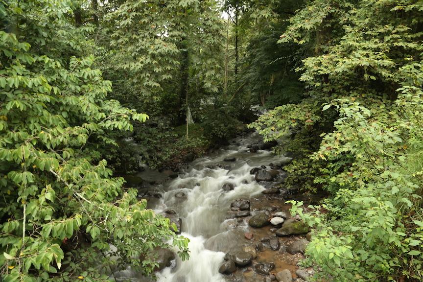 Vecinos de la reserva de Briones y del río Pixquiac luchan por conservar su entorno