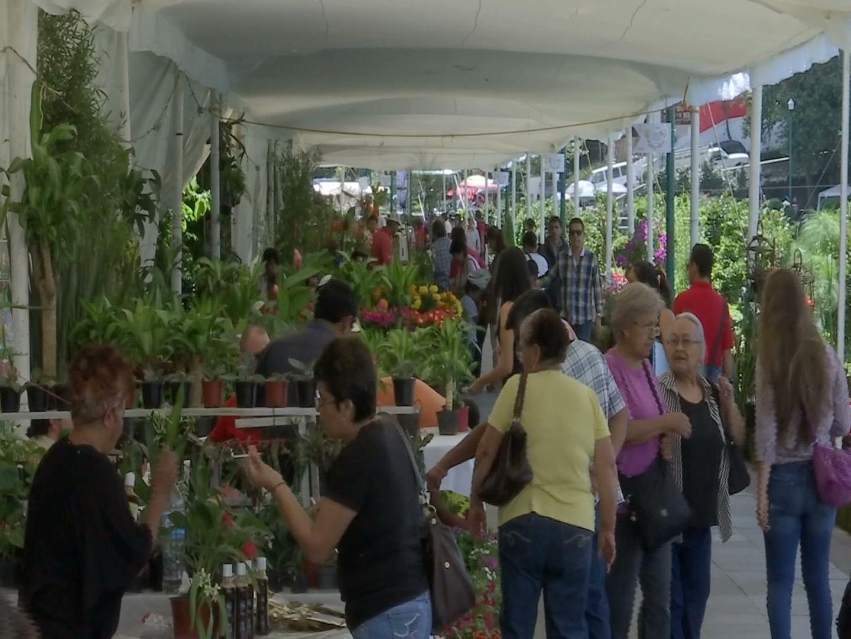 Alegría y color en el Segundo Festival de las Flores de Xalapa