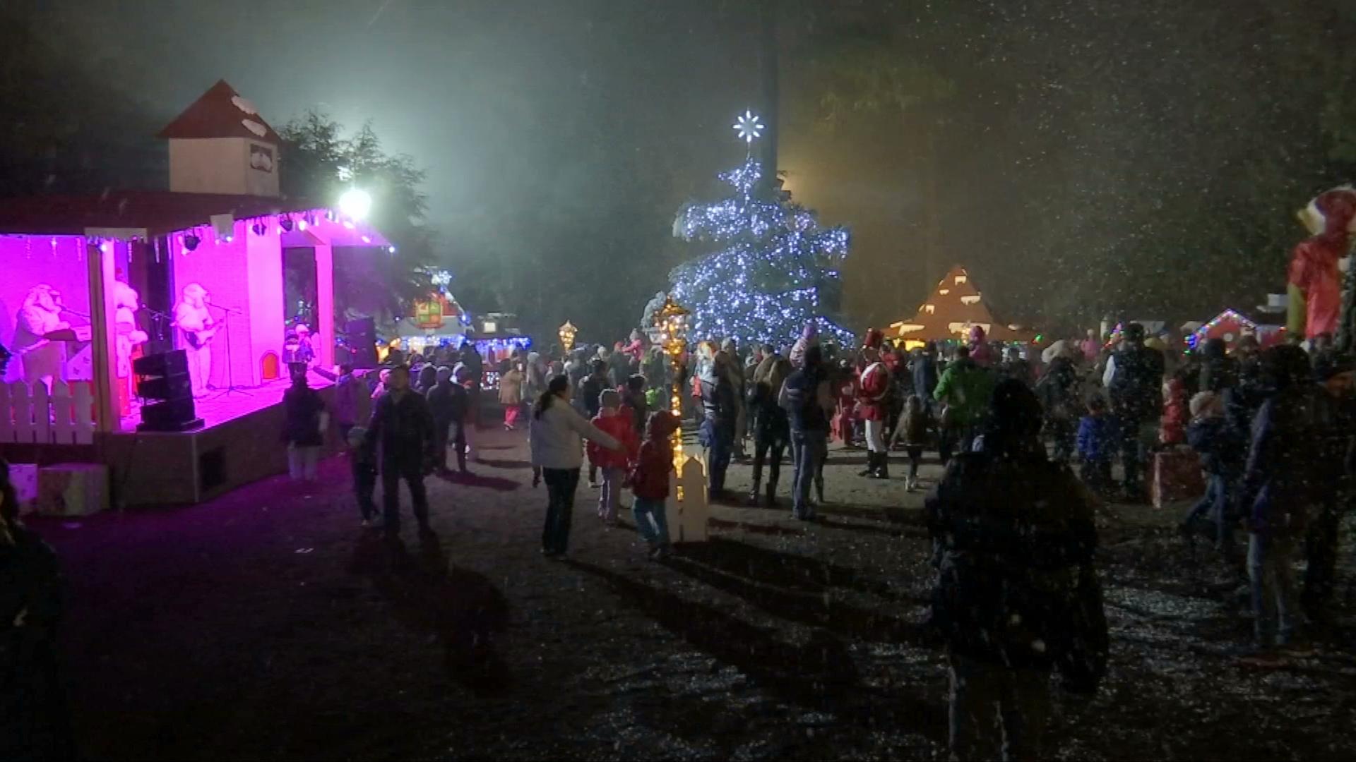 Llega la magia de la Navidad al bosque del Ciclo Verde