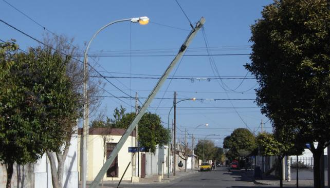 Empresas de telefonía dañan árboles de Xalapa: Inecol