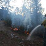 Exhorta CONAFOR a ciudadanos a no hacer uso del fuego en zonas forestales