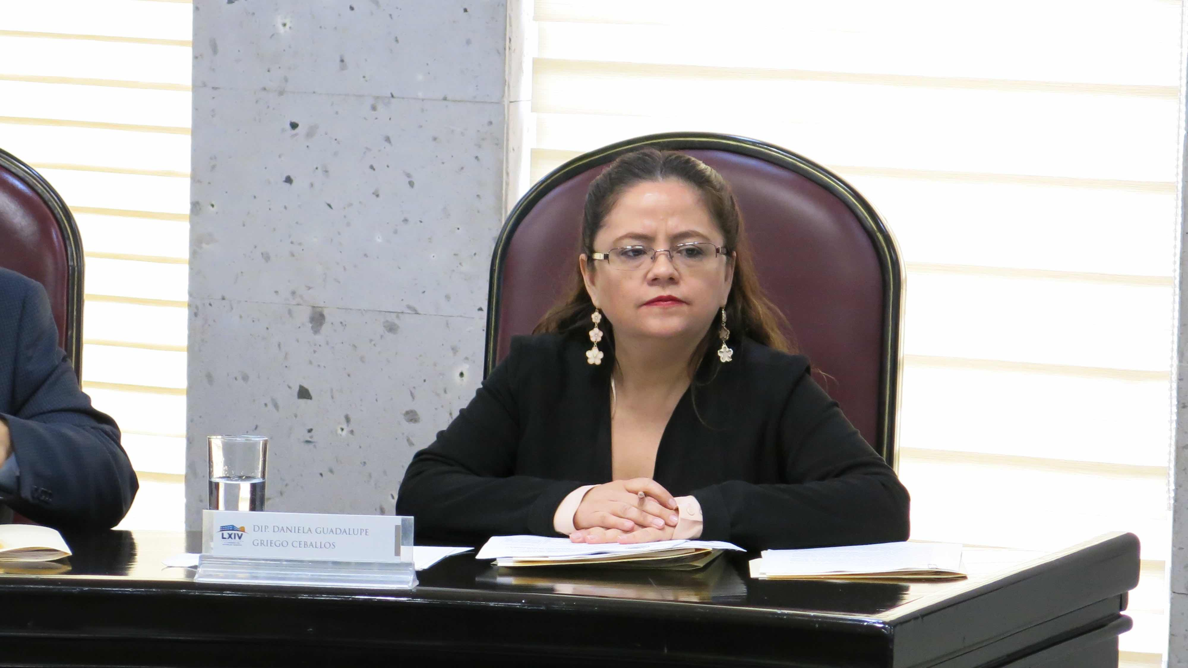 Nuevo Código Civil para Veracruz debe incluir temas de la comunidad lésbico-gay: diputada de Morena