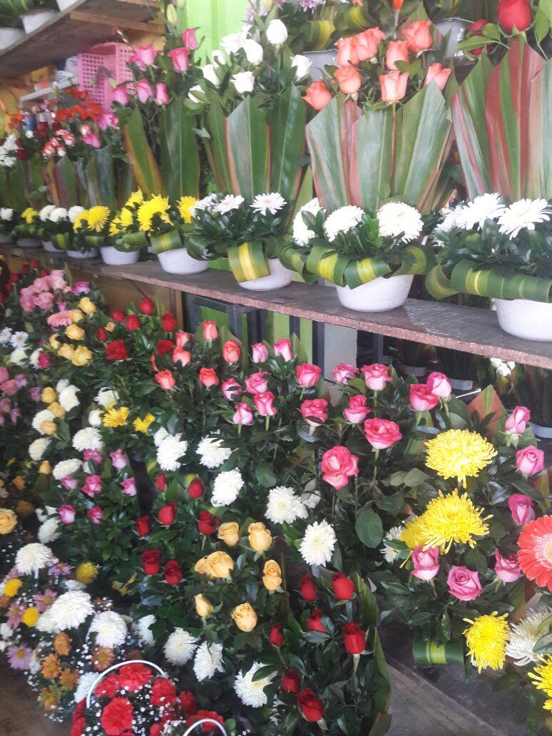 Graduaciones beneficiarán economía de Tuxpan: Canaco