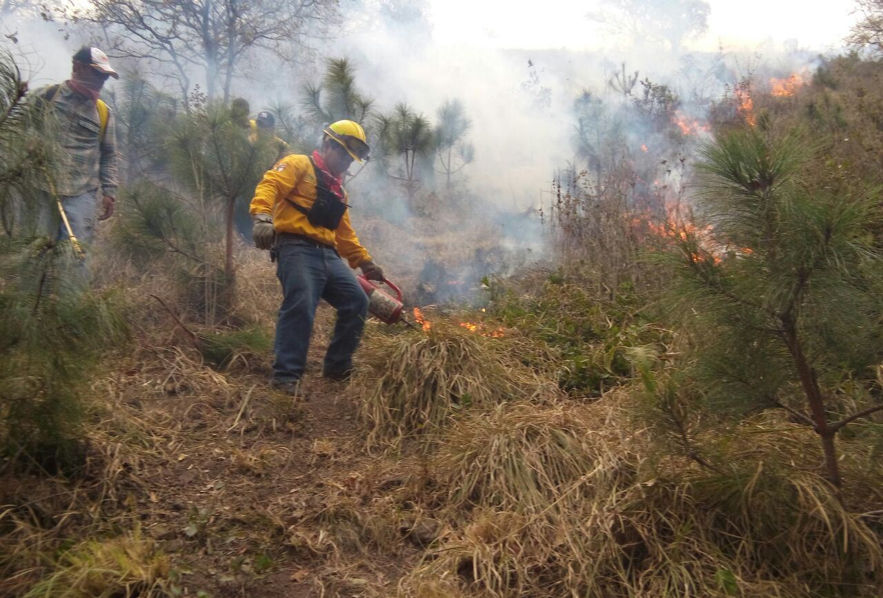 Olar de Calor provoca incendio de pastizales en Coatzacoalcos