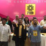 Aprueba Consejo Estatal del PRD candidaturas en 14 municipios