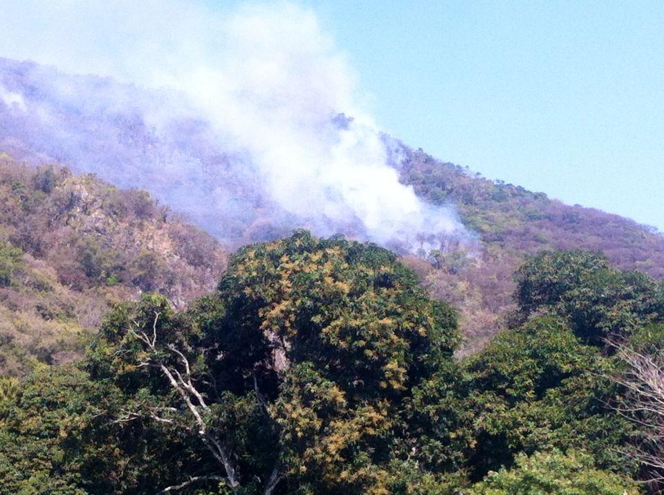 En junio disminuye el número de incendios