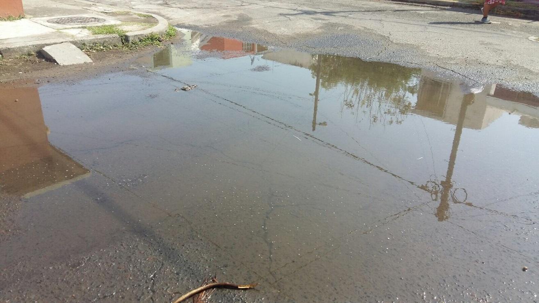 Reportan baches y fugas de agua en calle del fraccionamiento casas Aras Palma Real, en Veracruz