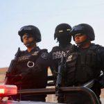 La Policía Estatal abate a cuatro y asegura 13 vehículos en Playa Vicente