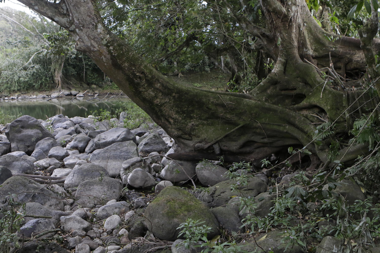Conagua registra este año como de los más cálidos desde 1981, y el más seco en cuanto a lluvias