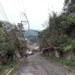 Cinco casas inundadas y árboles caídos, por aguacero de anoche, en Xalapa