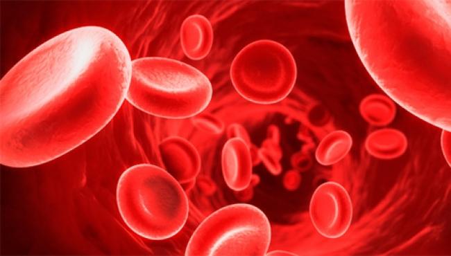 Consideran a la hemofilia como una enfermedad huérfana