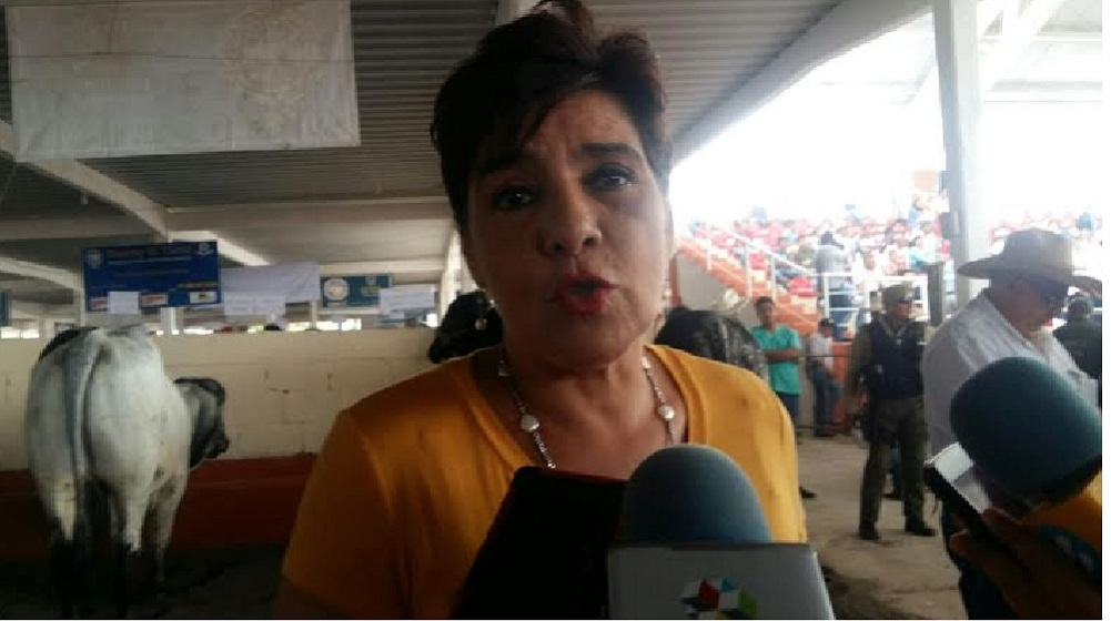 Diputados locales someterán a votación desafuero de Eva Cadena