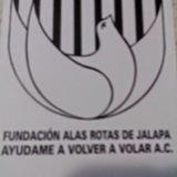 Fundación Alas Rotas expone en el Congreso del Estado