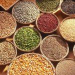 Aumentan exportaciones agroalimentarias a Emiratos Árabes Unidos en 160 por ciento: Sagarpa